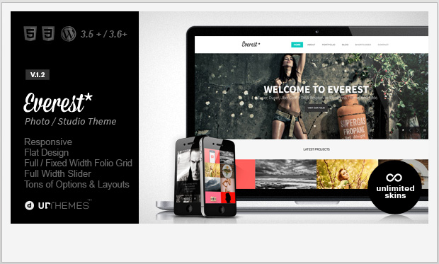 Everest -Responsive Grid WordPress Theme