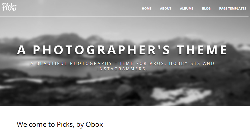 Picks - Authors WordPress Theme