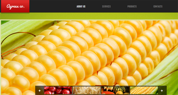 AgreexCo Responsive Agriculture WordPress Theme