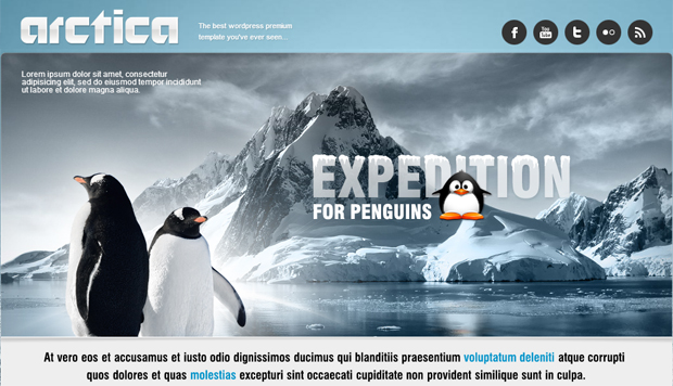 Arctica Responsive Travel WordPress Theme