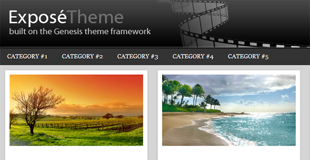 Expose - WordPress Responsive Gallery Theme