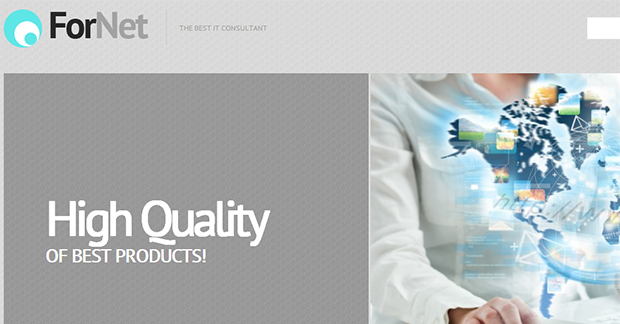 Grey & White Consulting - WordPress Responsive Insurance Agency Theme