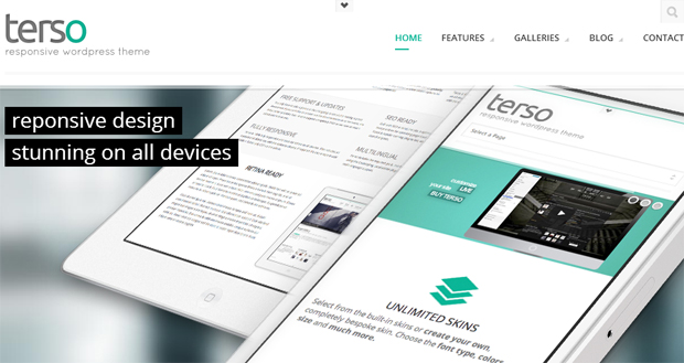 Terso - Gallery WordPress Responsive Theme