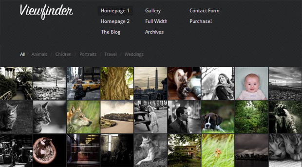 Viewfinder - Responsive Gallery Theme
