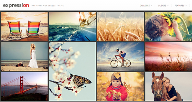 expression - WordPress Responsive Theme
