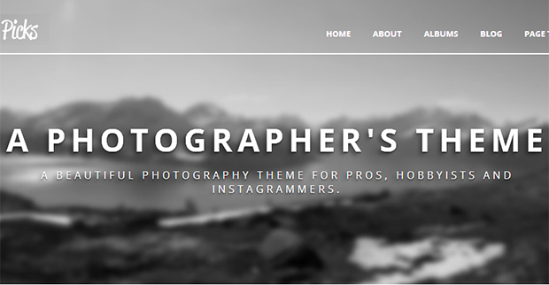 picks - WordPress Responsive Gallery Theme