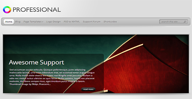 the professional WordPress Responsive Theme