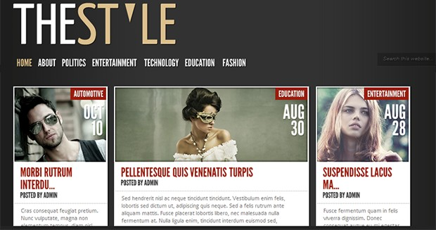 TheStyle - WordPress Responsive Theme