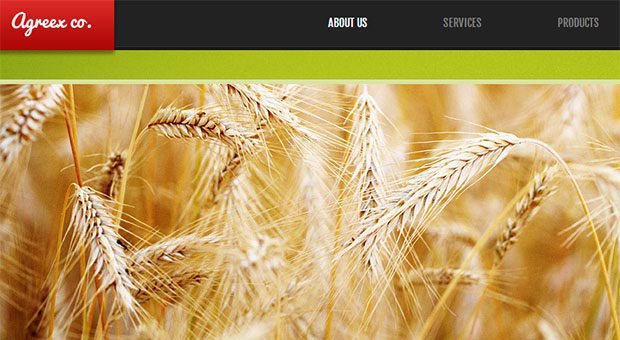 Agreex co - Digital Farm Responsive WordPress Theme
