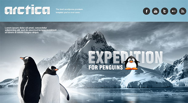 Arctica - Tourism WordPress Responsive Theme