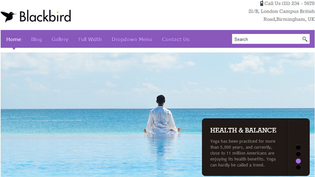 Blackbird - Yoga WordPress Theme