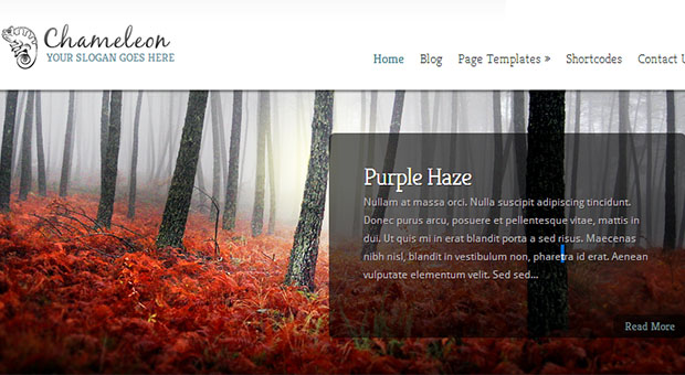 Chameleon - Tourism WordPress Responsive Theme