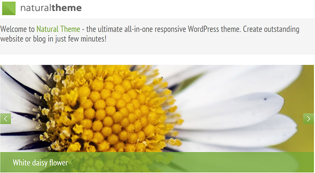 Natural - Powerful Responsive Acupuncture WordPress Theme