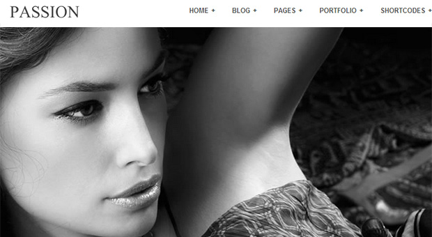 Passion Reloaded - Fashion Blogger Responsive WordPress Theme