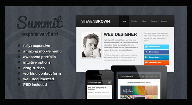 top 20 best resume style responsive themes