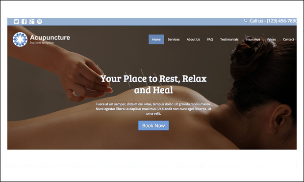 Acupuncture - WordPress Themes for Acupuncture Websites