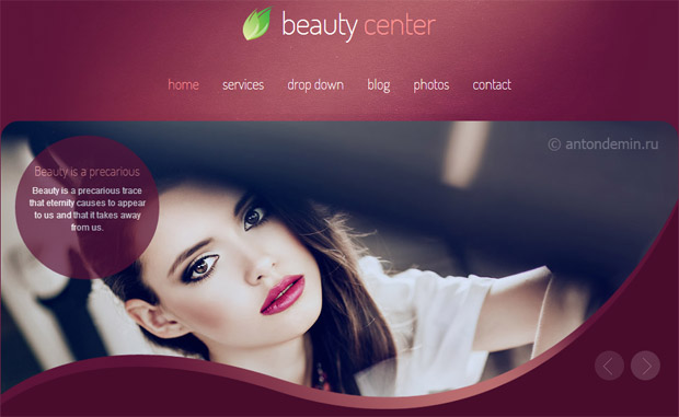 Beauty Centre - Salon Responsive WordPress Theme