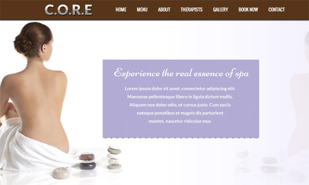 Core - Salon Responsive WordPress Theme