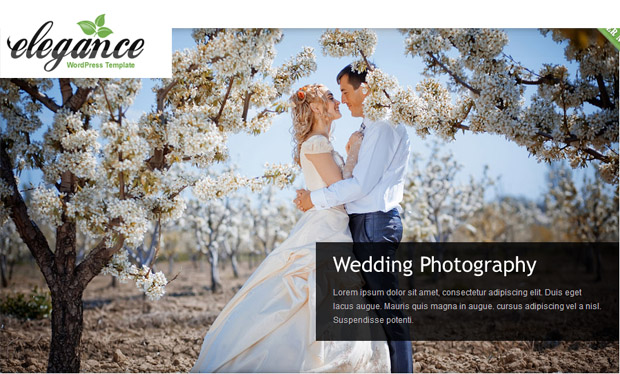 Elegance - Responsive Wedding Theme