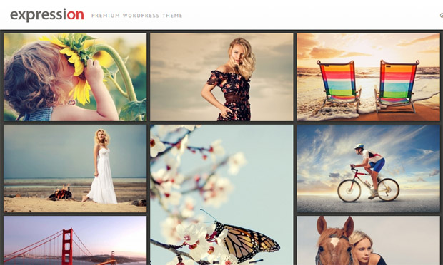 Expression - Responsive Wedding Theme