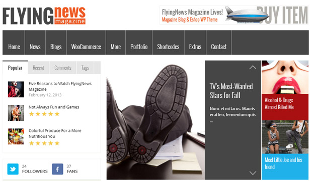 FlyingNews - Responsive Magazine WordPress Theme