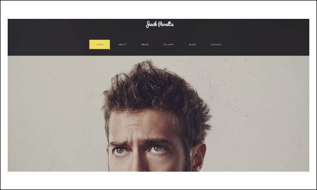 Freelance Writer - Writer WordPress Responsive Themes