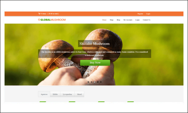 GlobalMushroom - WordPress Themes for Digital Farms