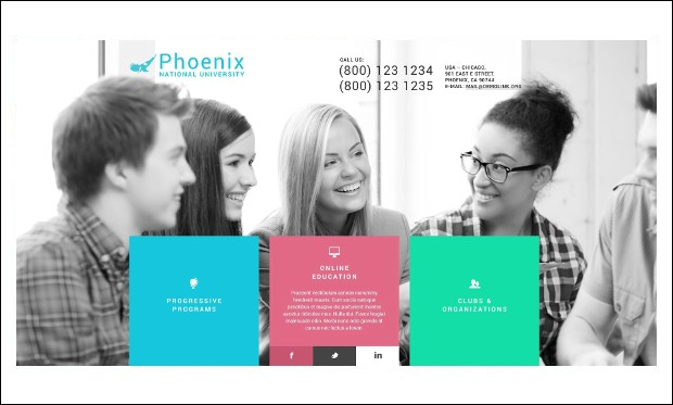 Phoenix - Educational Blogs WordPress Themes