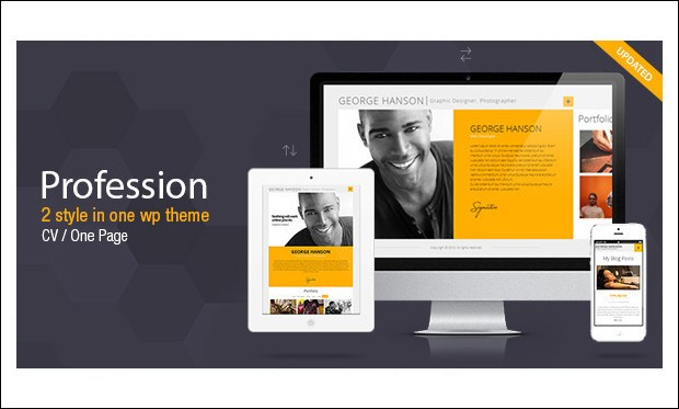 Profession - Resume Style WordPress Themes