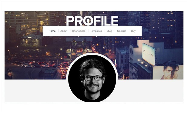 Profile - Resume Style WordPress Themes