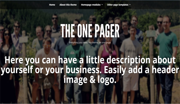 The One Pager - Responsive Video WordPress Theme
