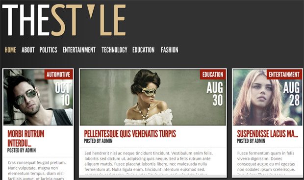 TheStyle - Responsive Magazine WordPress Theme