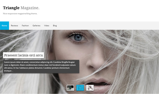 Triangle Magazine - Responsive Magazine WordPress Theme