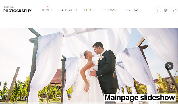Tripod - Responsive Wedding Theme