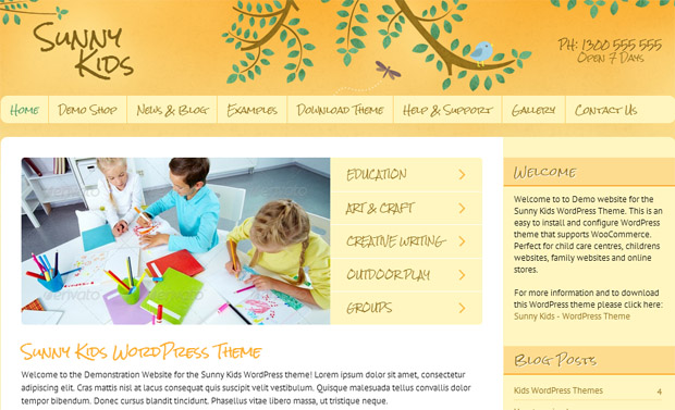 WordPress Responsive Theme for Kids Website