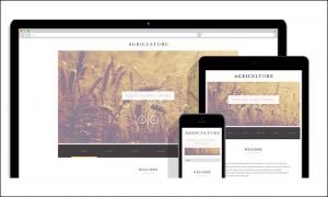 Agriculture Business - Agriculture WordPress Themes