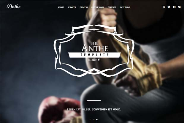 Anthe - Typography WordPress Theme