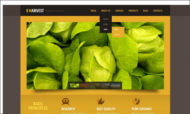 Black Orange - Agriculture WordPress Themes