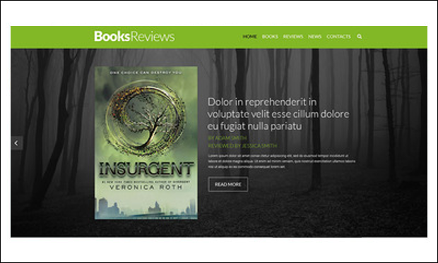BooksReviews - Review Websites WP Themes