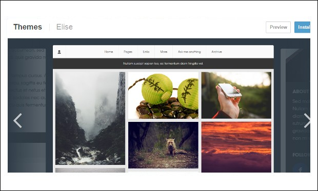 Elise - Tumblr WordPress Themes