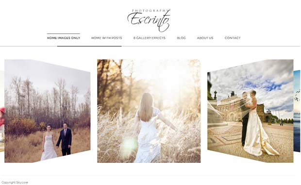 Escrinto - Responsive Photography WordPress Theme