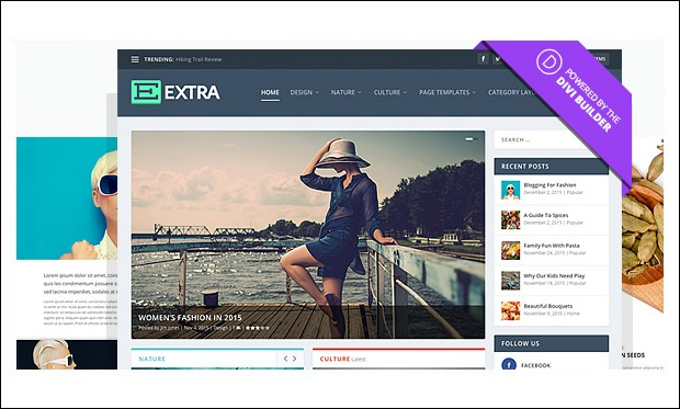 Extra - SEO friendly WordPress Themes