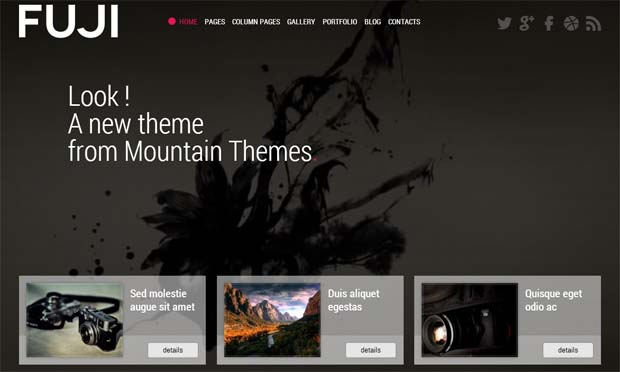 Fuji - Responsive Full Screen WordPress Theme