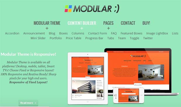 ModularTheme - Responsive HTML5 WordPress Theme