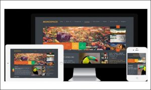 Monospace - Multimedia WordPress Themes