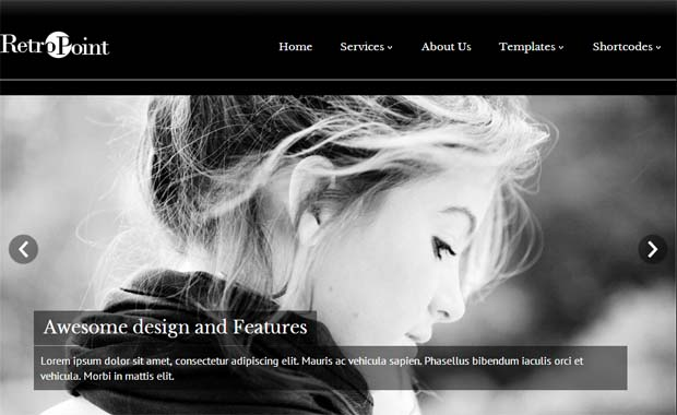 RetroPoint - Free Responsive WordPress Theme