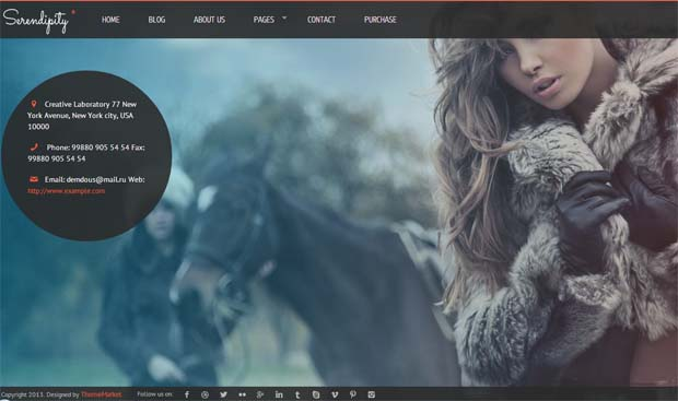 Serendipity - Responsive Full Screen WordPress Theme