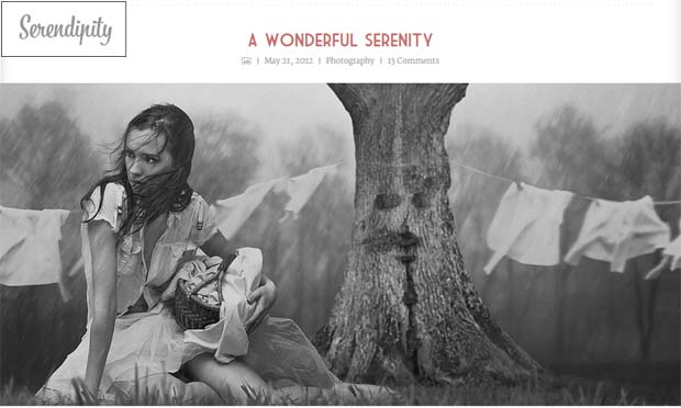 Serendipity - Responsive Tumblr WordPress Theme