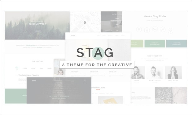 Stag - SEO friendly WordPress Themes