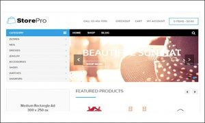 StorePro - Shopping Cart WordPress Themes